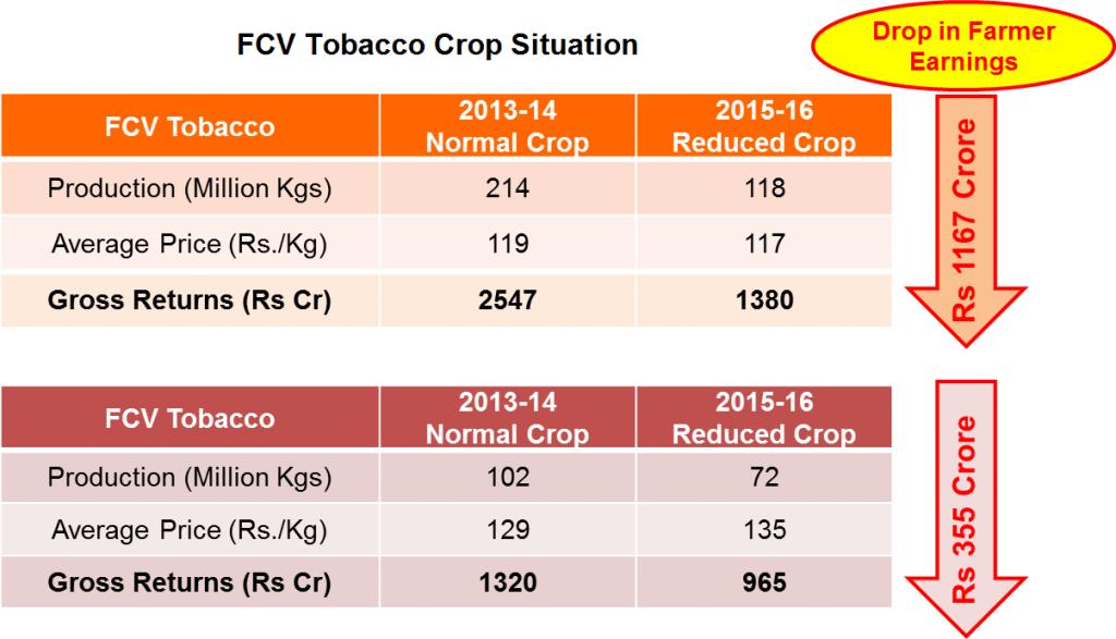 FCV Tobacco Crop Situation